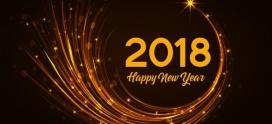 An nou fericit !